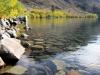 convit_lake_3